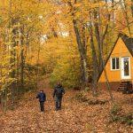 Camping_du_domaine_lausanne_pret_a_camper_glamping_pignon-des-bois_automne-1.2-SFW